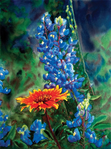 Indian Blanket and Blues